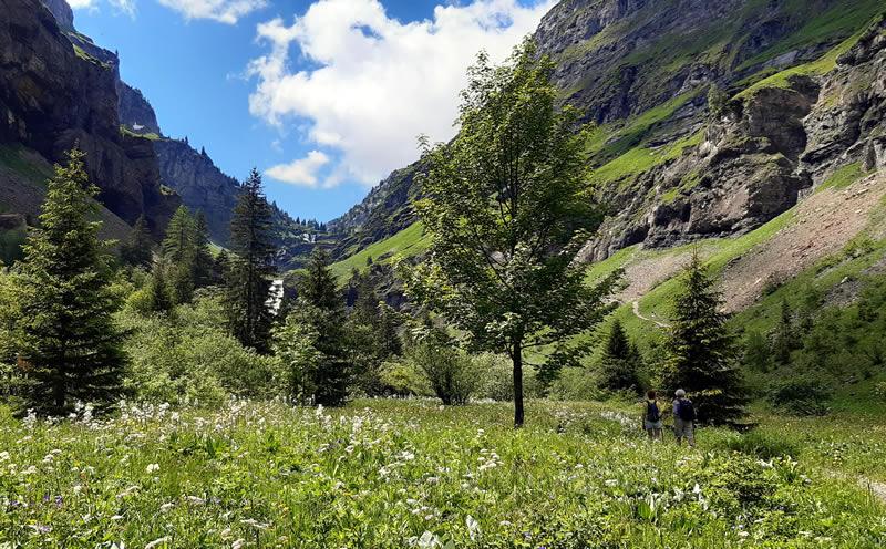 Marche en montagne vers le refuge de Salers